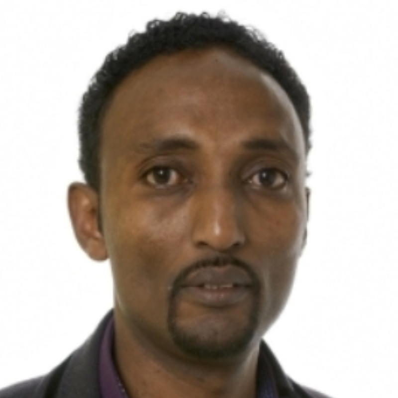 Bestyrelse Mohamed Olad Halane